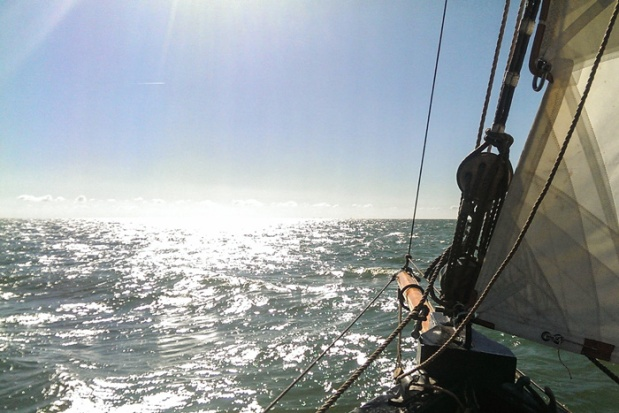 Pirat-nordlys-segel